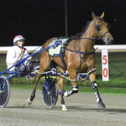 Queen reigns supreme in Bullion heat