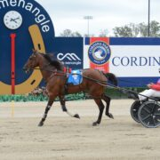 All the Late Mail for Menangle Tuesday afternoon