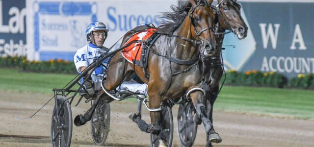 Your complete race-by-race guide to Menangle's Miracle Mile meeting