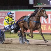 Late Mail 'unmasked' for Menangle Saturday night