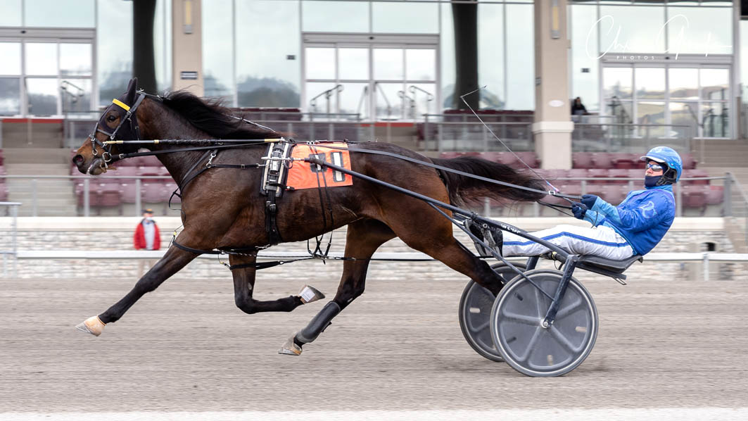 Trotter to extend unblemished record