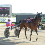 Don't miss these four Menangle specials