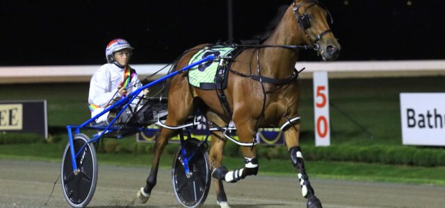 Here's how to back a winner at Menangle tonight