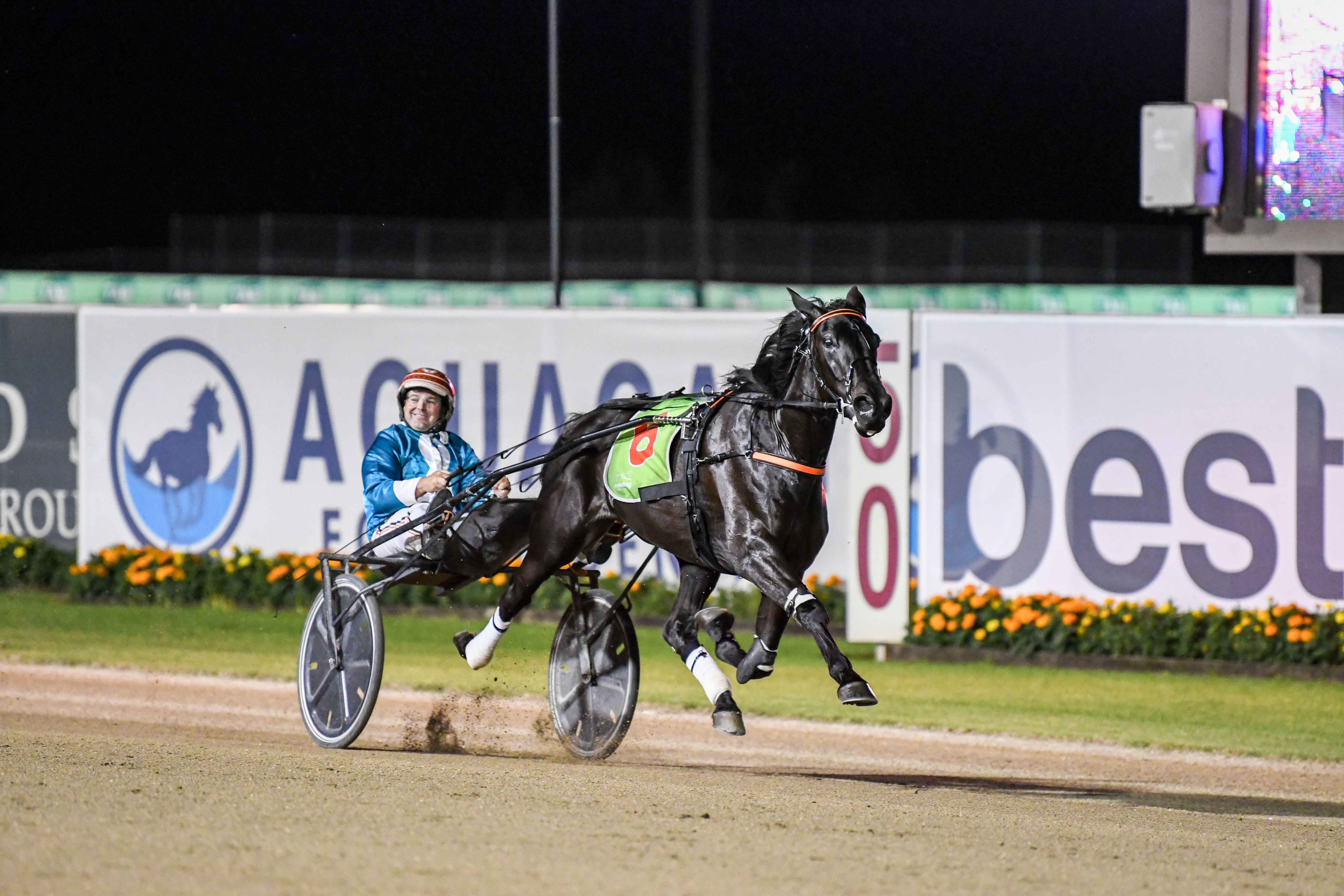 An in-depth guide to backing a winner at Menangle Saturday night