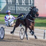 Victorians add a touch of glamour to Oaks night at Menangle
