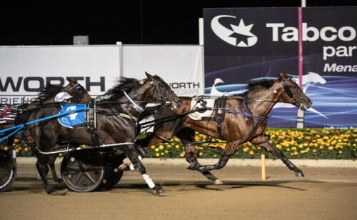All the Late Mail for Menangle Saturday night