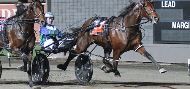 Late Mail for Menangle Saturday night