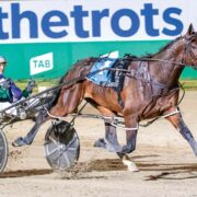 Group One shapes as easy pickings