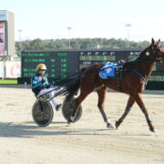 P. J. Hall a natural for the winners' circle