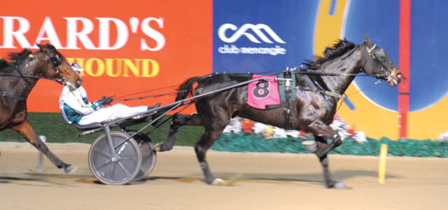 Ambitious plans for promising trotter