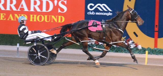 Aussie Group race winner America-bound