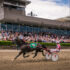 A million dollars on the line at Inter Dominion
