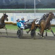 Rich series a lure for mares racing in regional areas