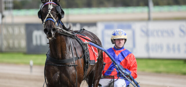 Late Mail for Menangle this afternoon
