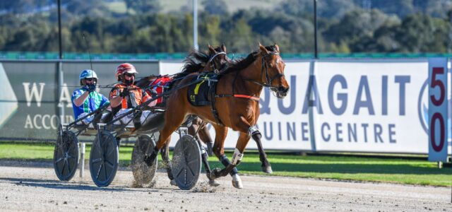 Mike Ko'cass with four Late Mail specials for Menangle Tuesday