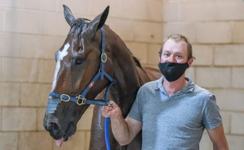 Breeders Challenge, Inter Dom . . . it's all systems go at Menangle