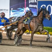 Mike Ko'cass finds us a winner at Menangle Saturday night