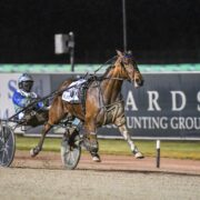Mike Ko'cass with all the winners at Tabcorp Park Menangle Saturday night