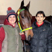 Stallion service raffle to aid with cancer treatment