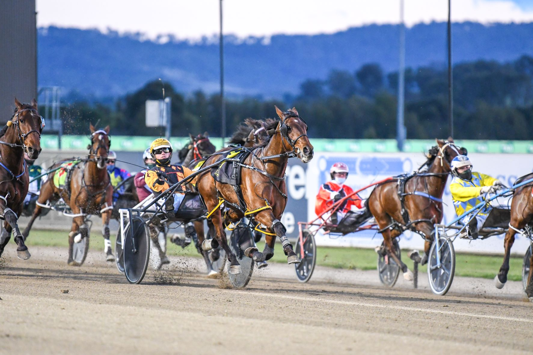 Your race-by-race guide to Tabcorp Park Menangle Saturday night