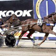 Kiwi seeking revenge for star dam