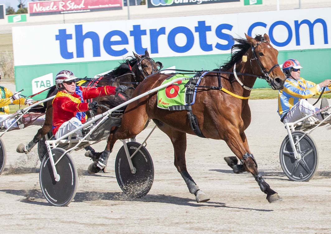 Sights set on Country Cup Circuit