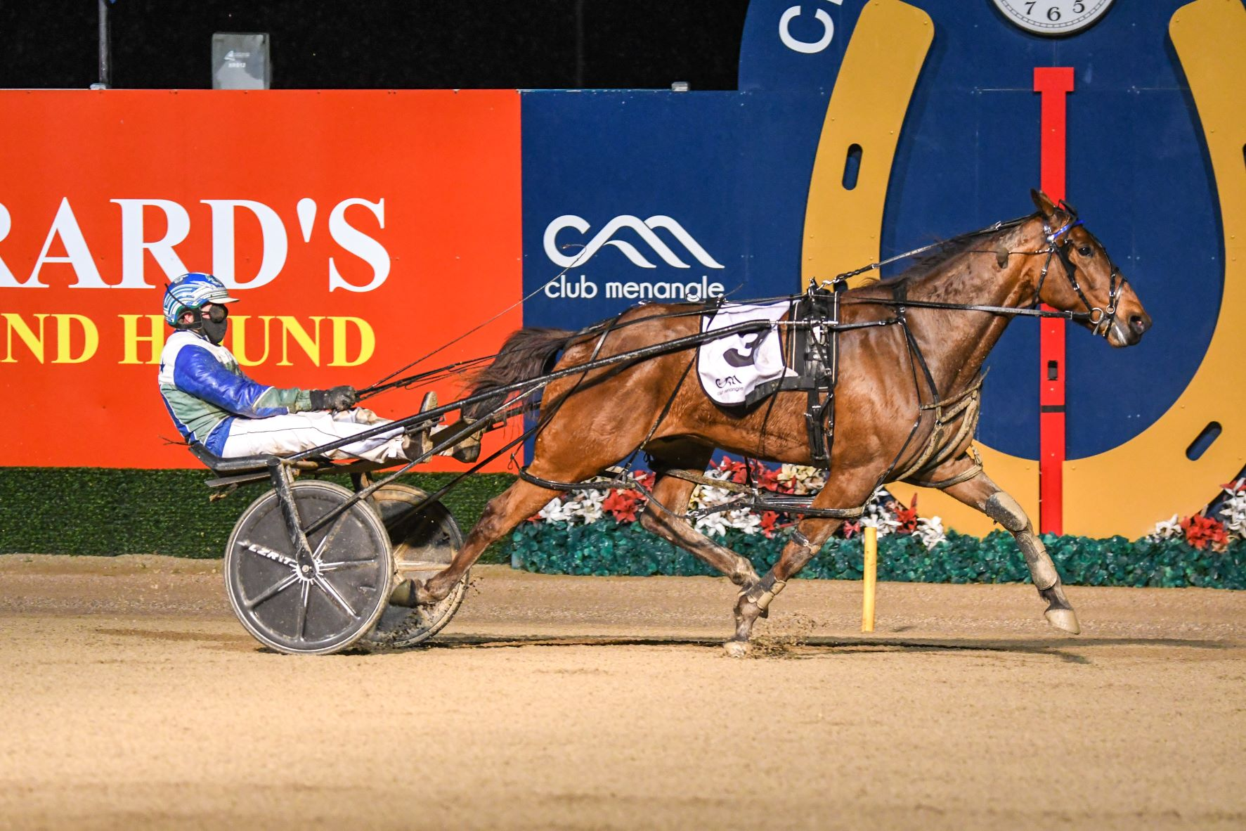 Mike Ko'cass with all the winners for Tabcorp Park Menangle Saturday night